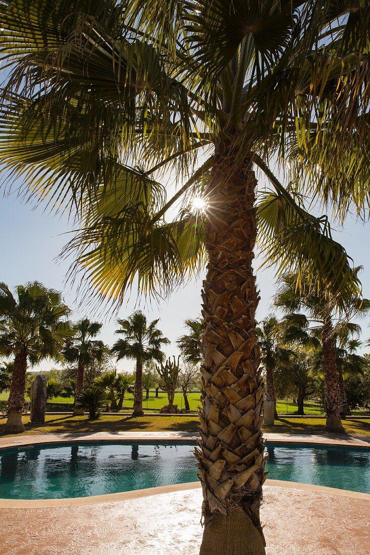 Spanien, Mallorca, Finca Villa Emmy mit Pool