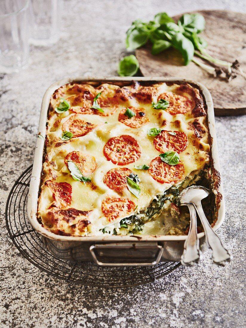 Mangold-Lasagne mit Ricotta