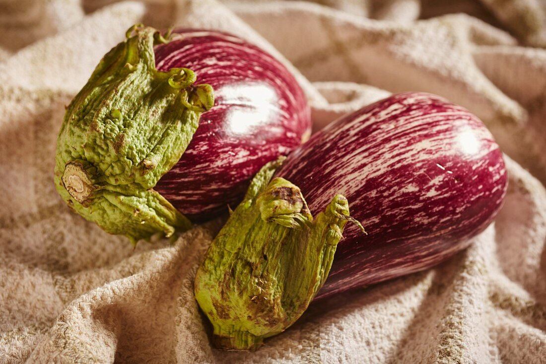 Two striped aubergines on a cloth