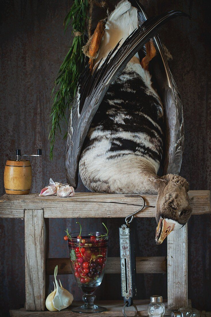 An arrangement featuring a dead grey goose on a wooden rack, redcurrants, garlic, salt and pepper