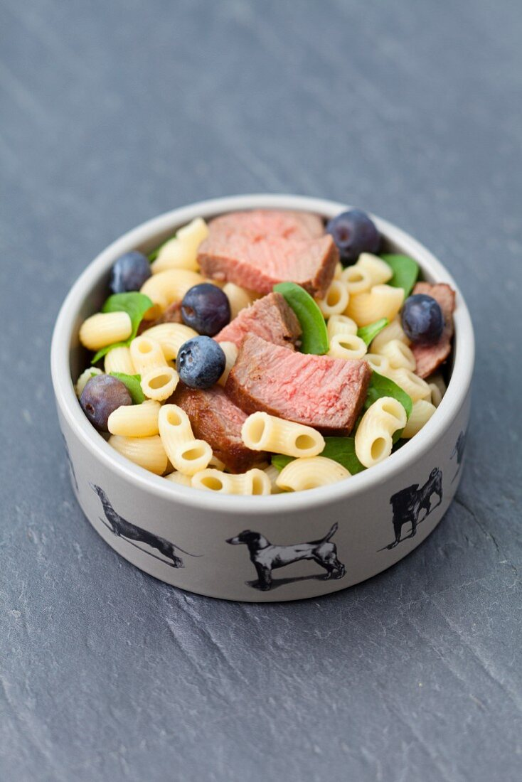 Pasta, meat and blueberries in a dog bowl