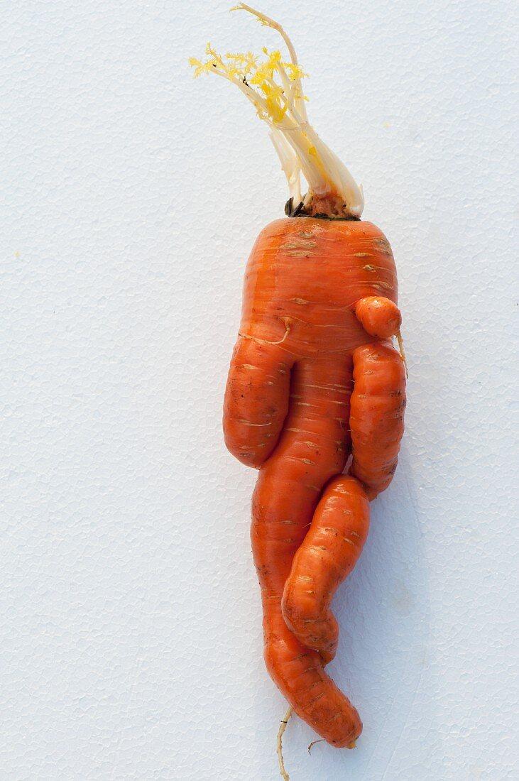 A knobbly carrot