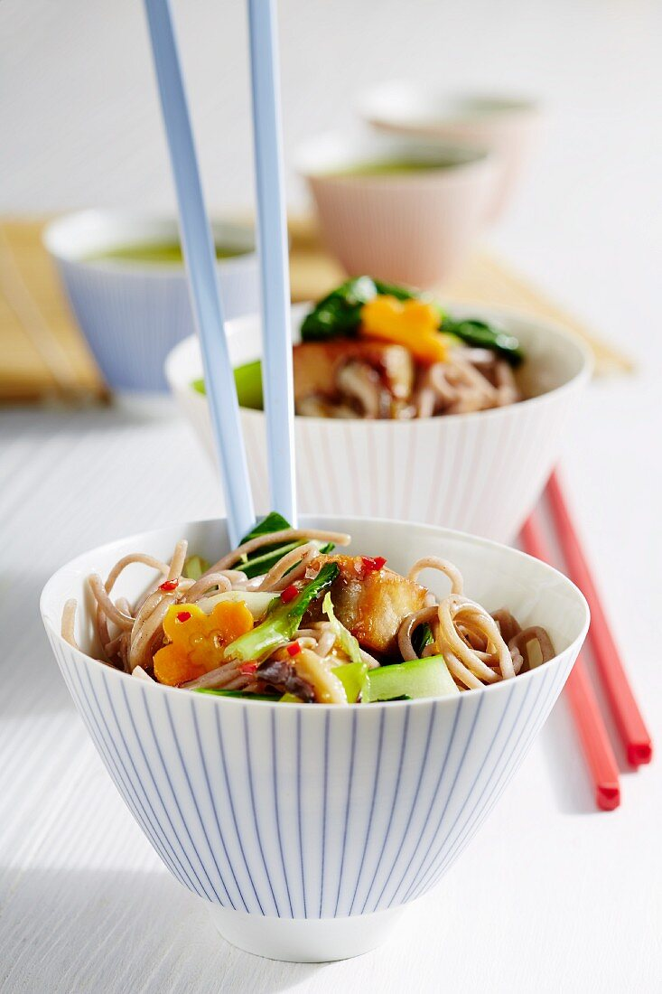 Soba noodles with tuna fish and vegetables (Japan)