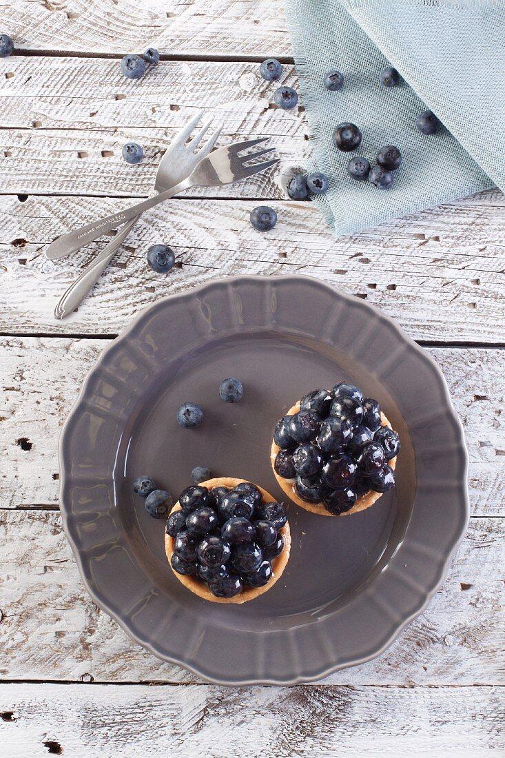 Two blueberry tartlets on a plate (seen from above)