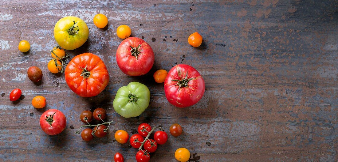 Various types of tomatoes on a metal surface (seen from above)