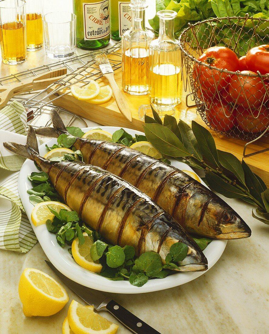 Two grilled mackerel on watercress