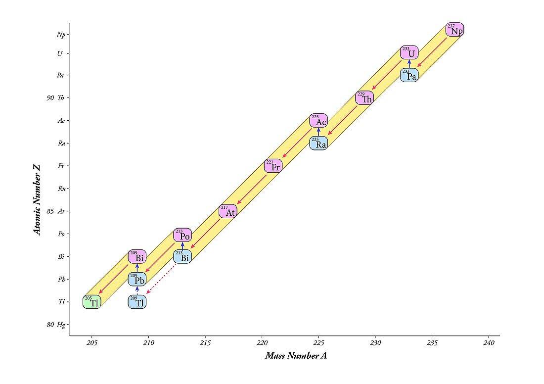 Nuclear decay chain,neptunium series