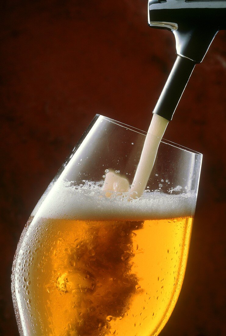 Pouring a Glass of Beer from the Tap