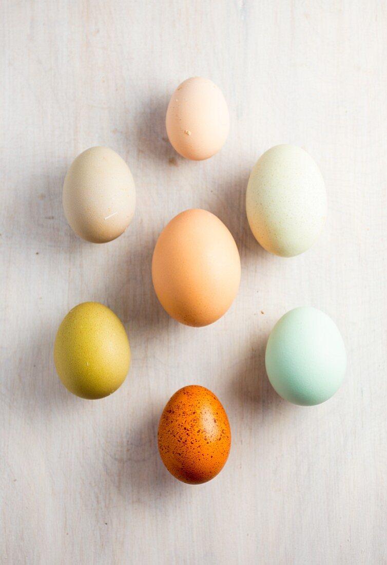 Various coloured eggs