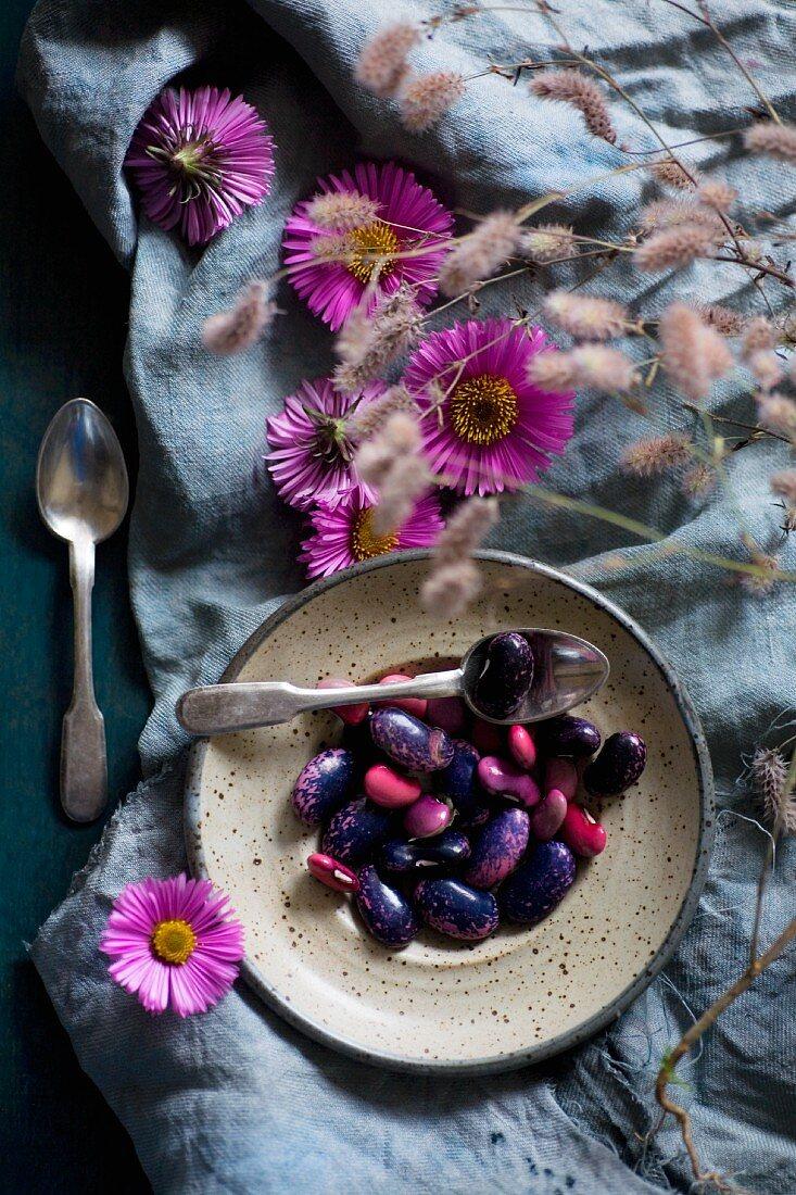 Colourful beans