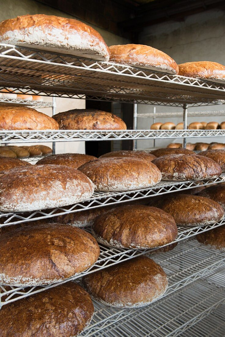 Assorted loaves of bread on metal shelves in a bakery