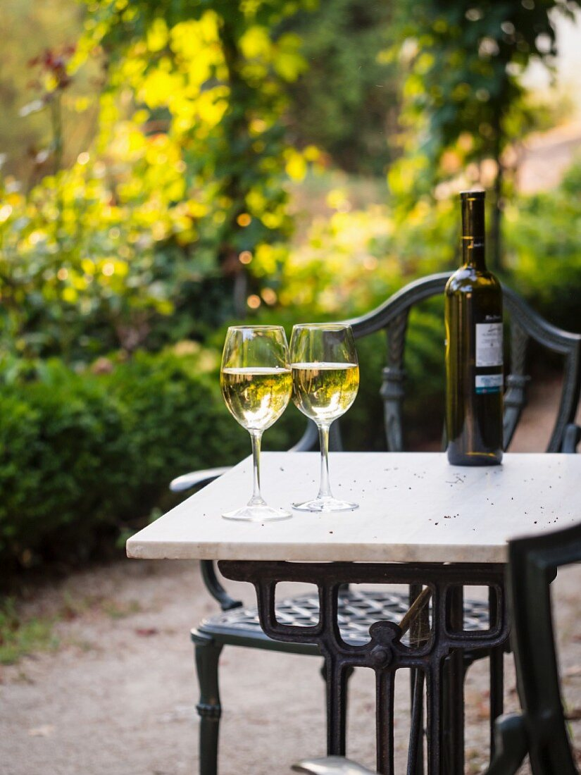 Two glasses of Albarino white wine served in the garden of one of the wineries in Galicia, Spain