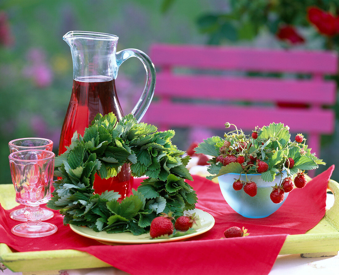 Fragaria (strawberry, alpine strawberry)