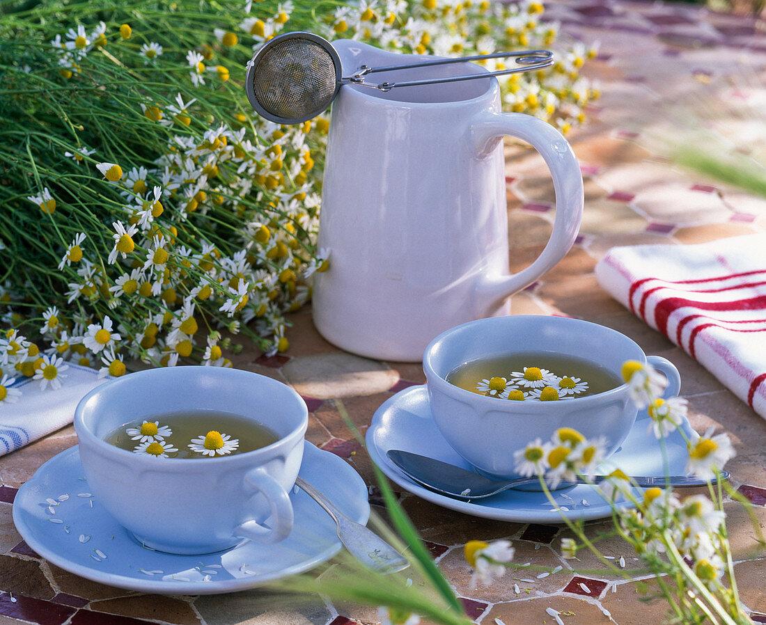 Chamomilla recutita syn Matricaria recutita, jug and cups