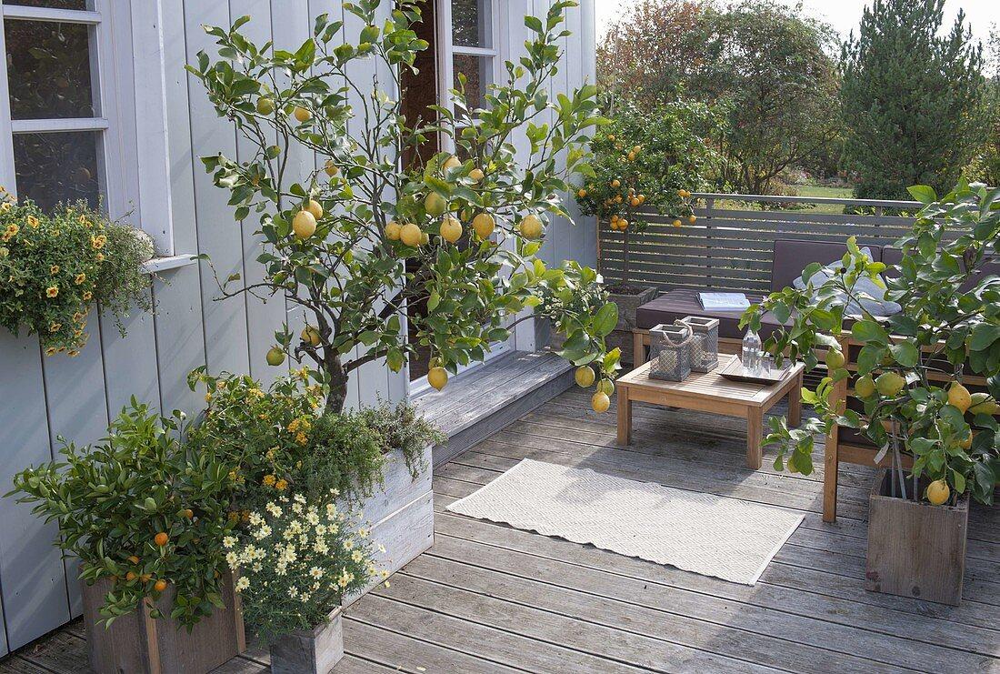 Mediterrane Terrasse mit Lounge Ecke – Bild kaufen – 20 ...