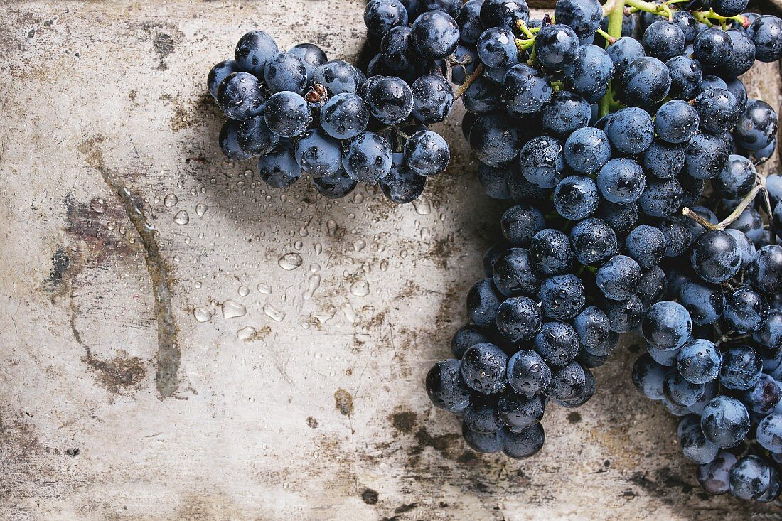 Bunch of ripe wet red grapes over old texture metal background