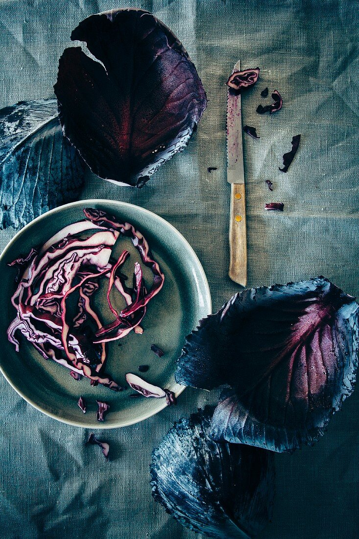 Red cabbage leaves and strips on a plate