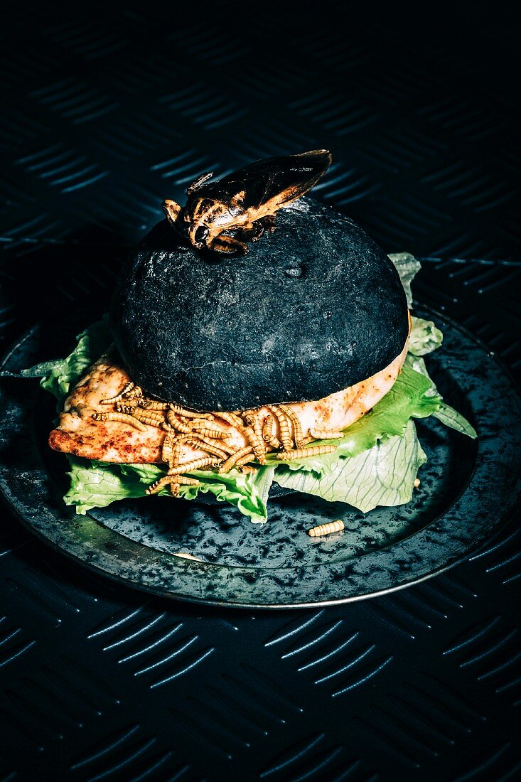 Halloween Chicken burger with Mealworms and topped with a giant Waterbug