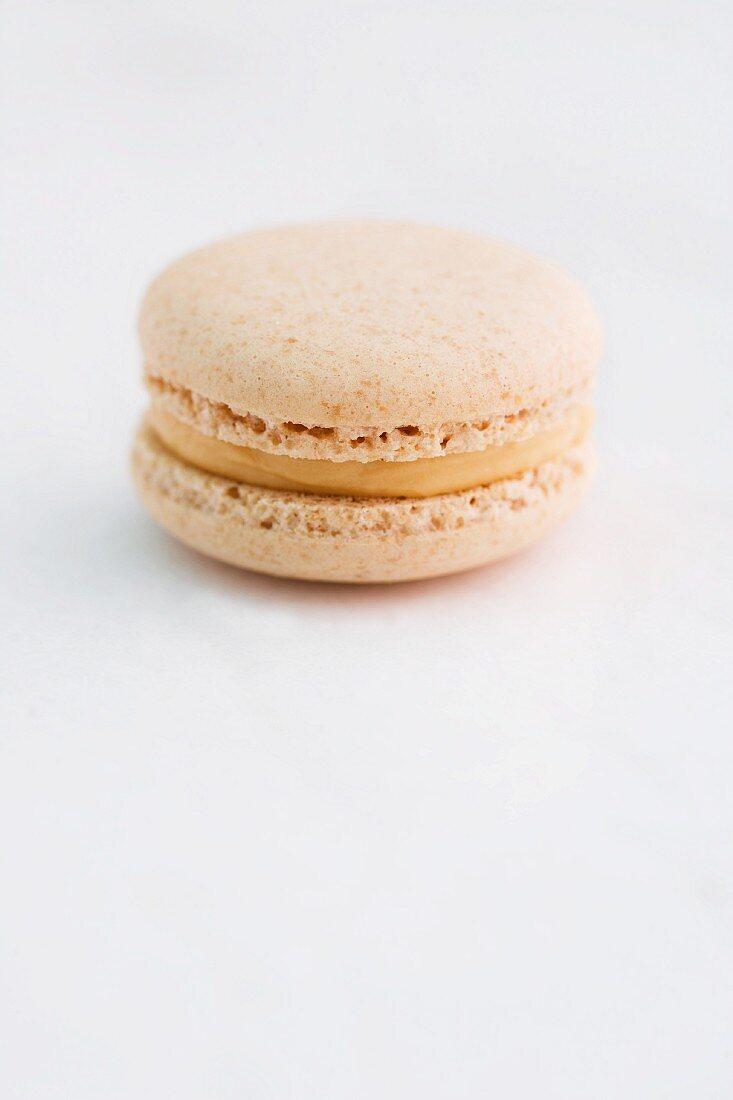 Peanut and caramel macaron
