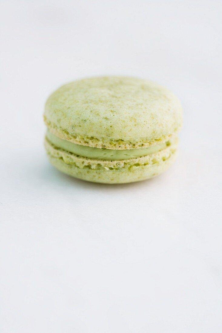 A pistachio macaron