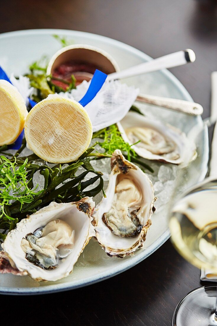 A plate of oysters and a glass of white wine
