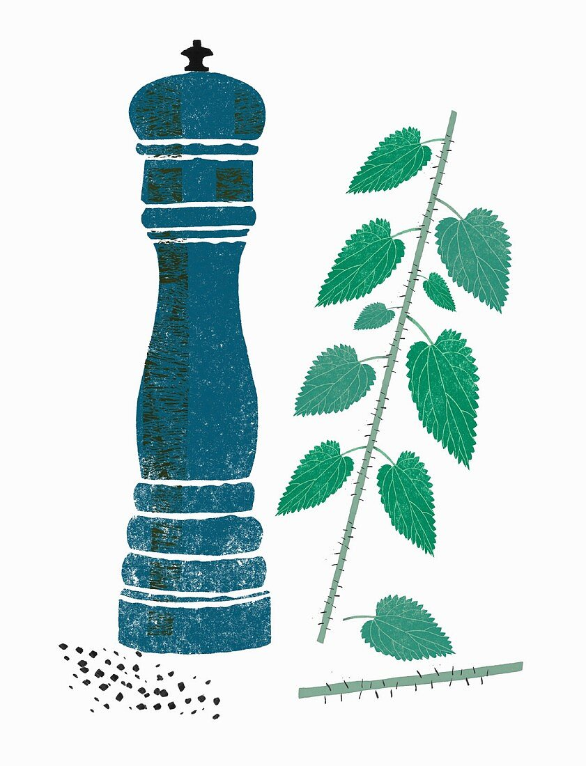 A pepper mill and stinging nettles (illustration)