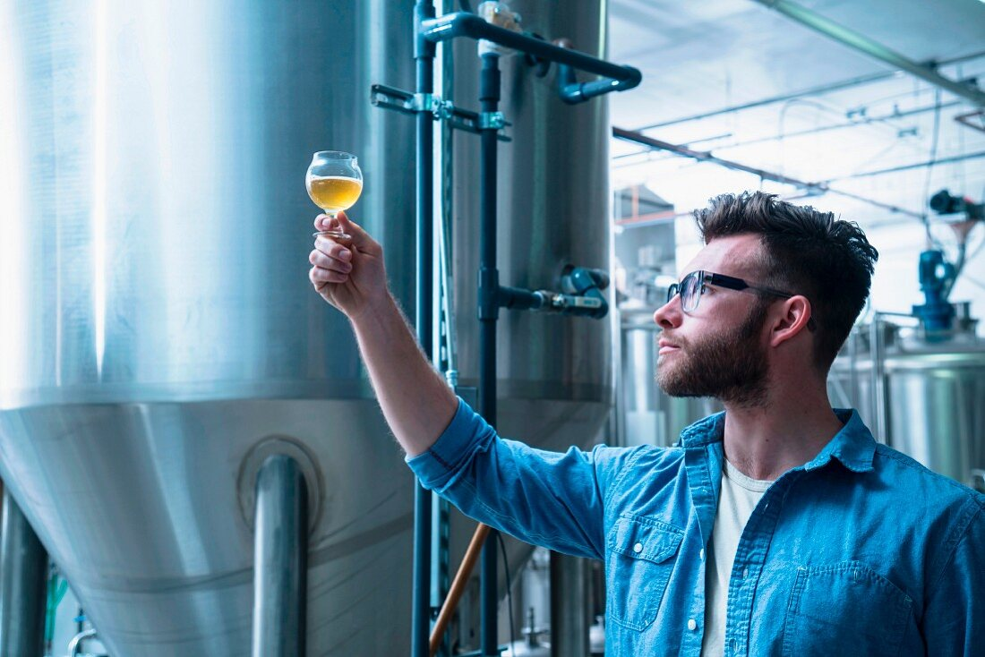 A beer brewer checking the quality of beer (USA)