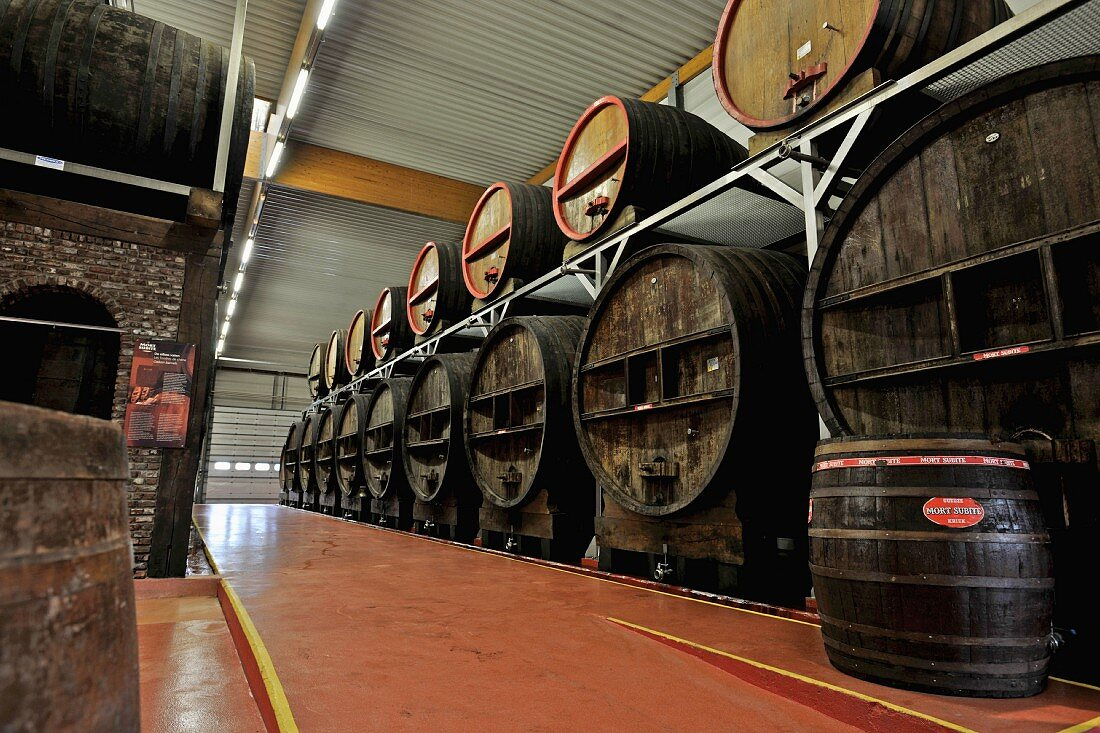 Belgian beer (Mort Subite, Lambic) in barrels in a brewery