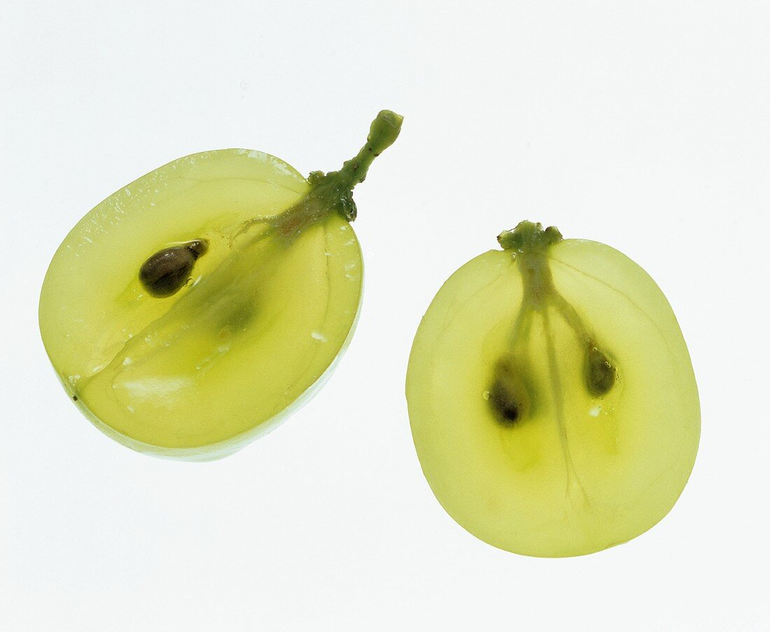 White wine grapes (cross-section) consist of up to 90% water