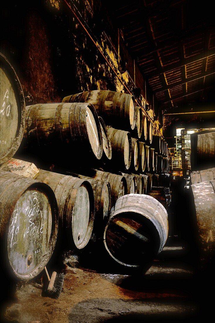 Port wine in wooden barrels in the Niepoort winery, Portugal