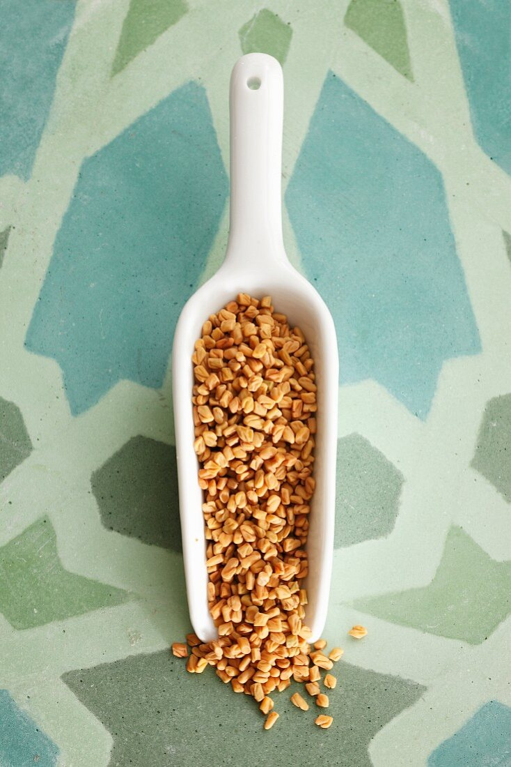 Fenugreek seeds on a small scoop