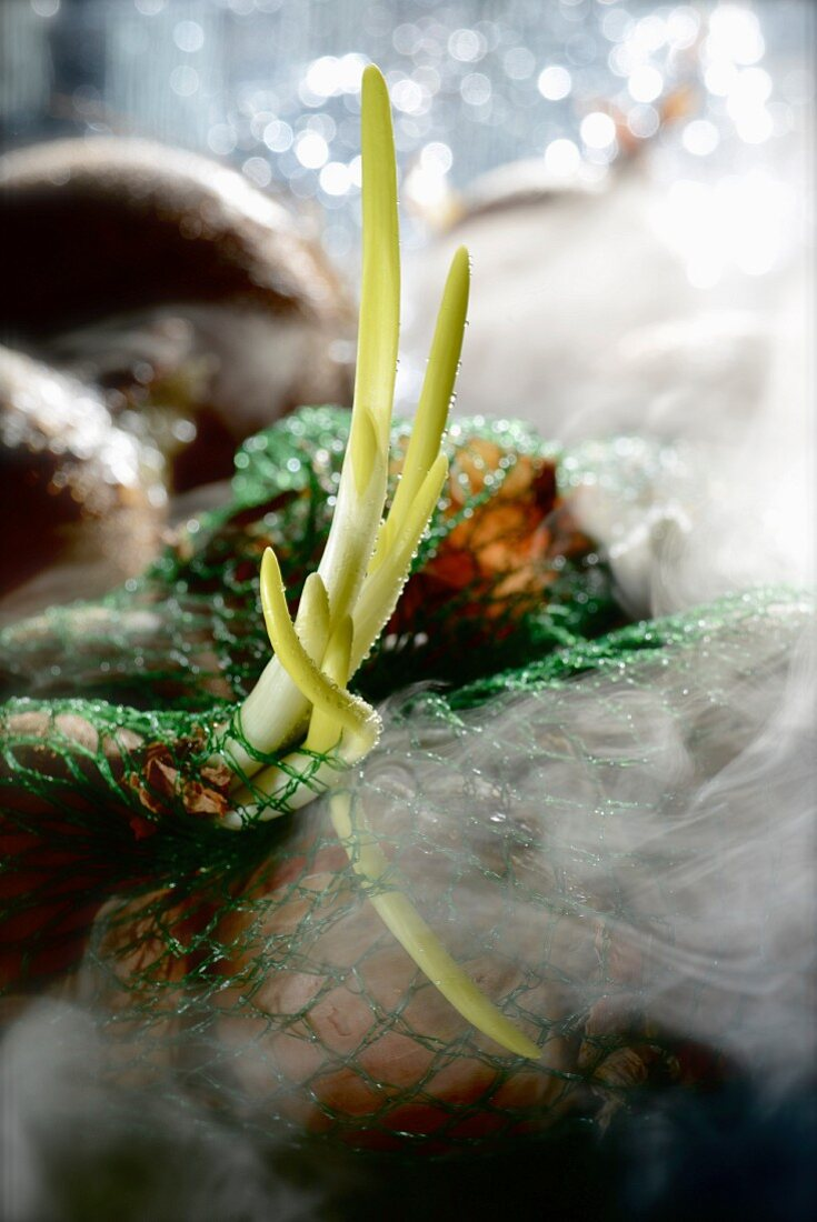 Onions in a net surrounded by smoke