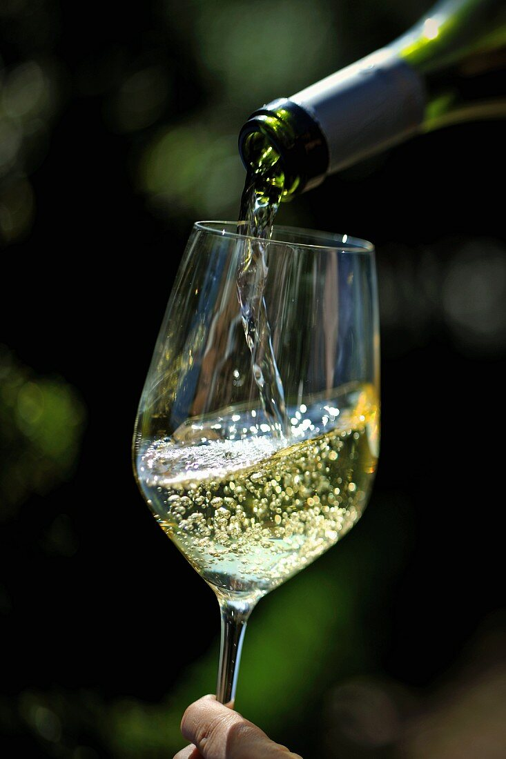 White Wine Pouring from Bottle into a Glass