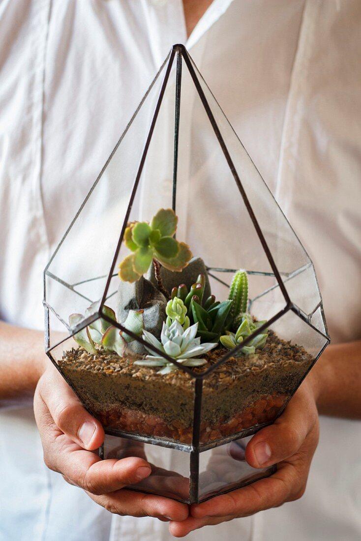 Succulents in miniature terrarium held in hands