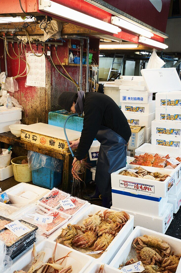Crustaceans at the Tsukiji fish market in Tokyo, Japan