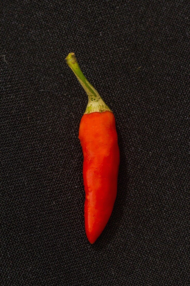 Chilli 'Bird'S Eye' (a very spicy chilli)