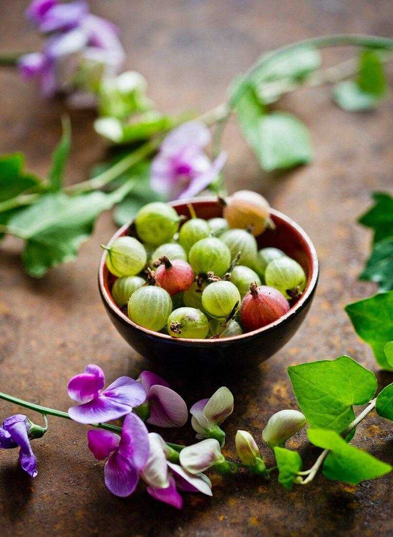 A bowl of fresh gooseberries
