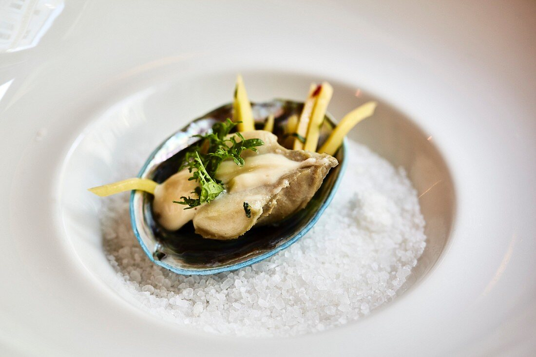 An Abalone mussel on a bed of salt