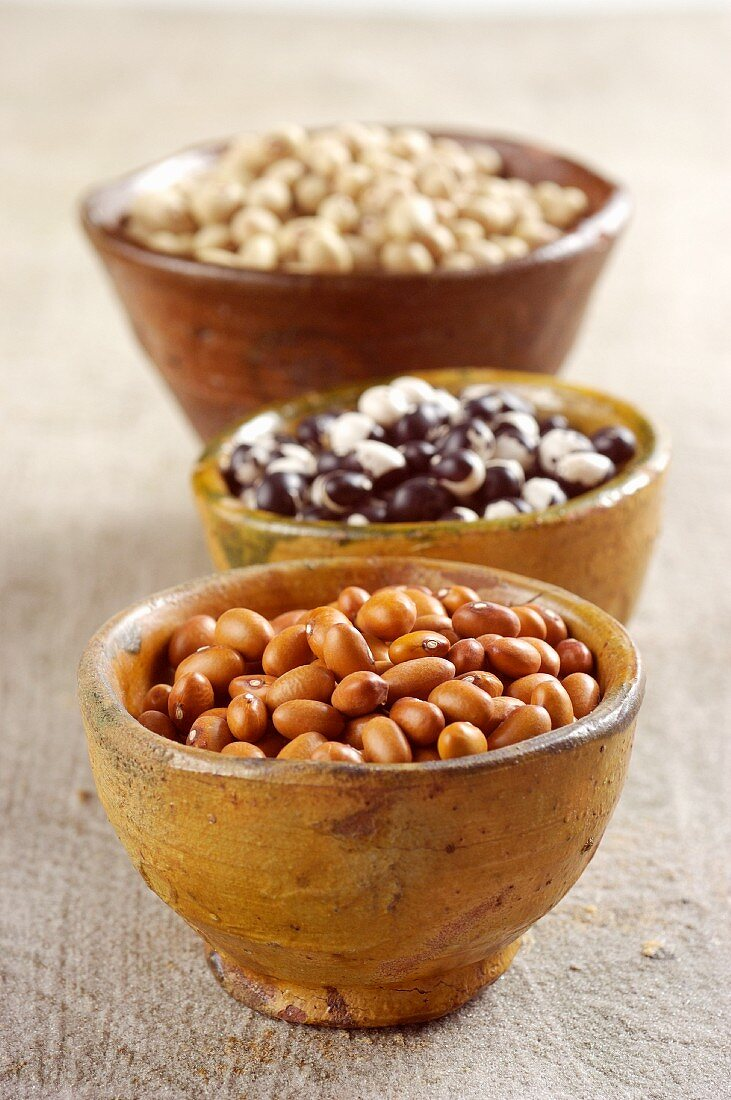 Various types of Italian beans in wooden bowls