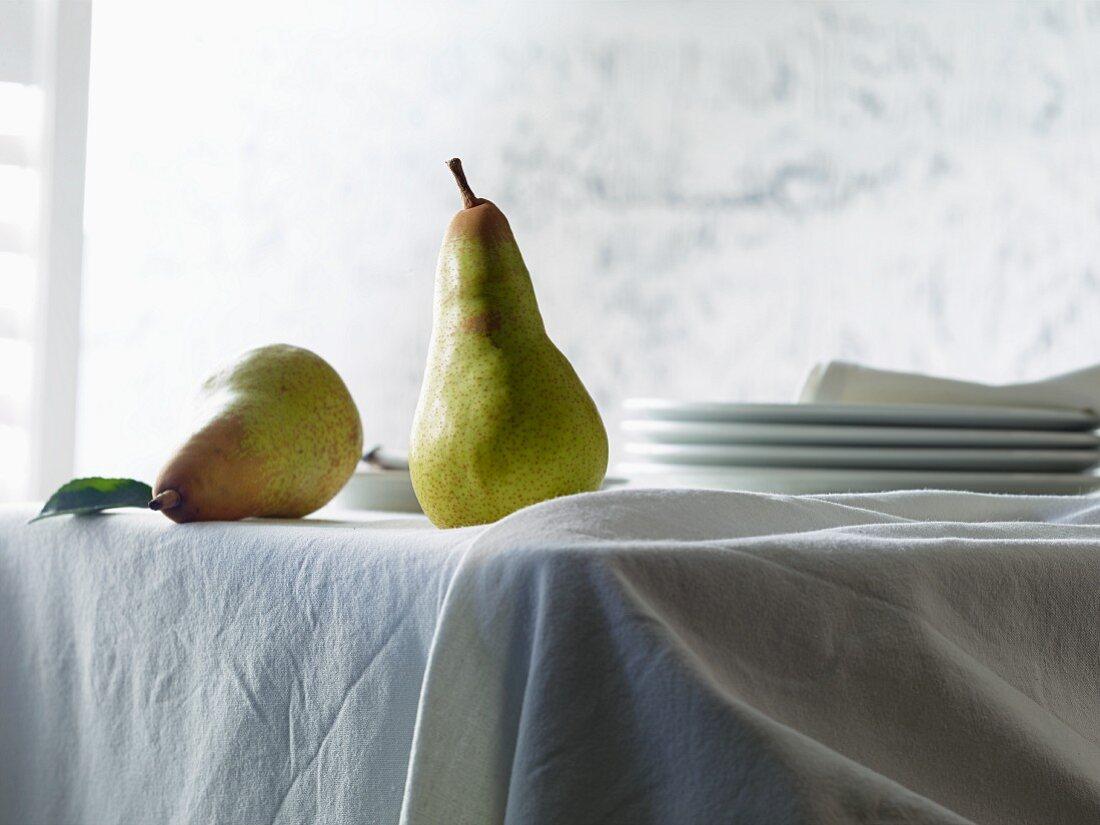 Zwei Birnen der Sorte Abate Fetel auf Tisch mit weisser Tischdecke