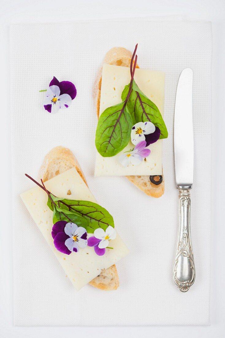 Oliven-Baguette belegt mit Almkäse, Blutampferblatt und Hornveilchenblüten