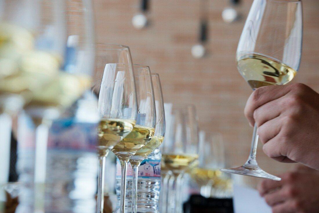 White wine tasting at the Finca Montepedroso (Verdejo, Rueda, Spain)