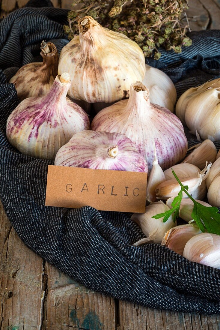 Purple garlic bulbs on a fabric napkin on a rustic wooden table with thyme and parsley