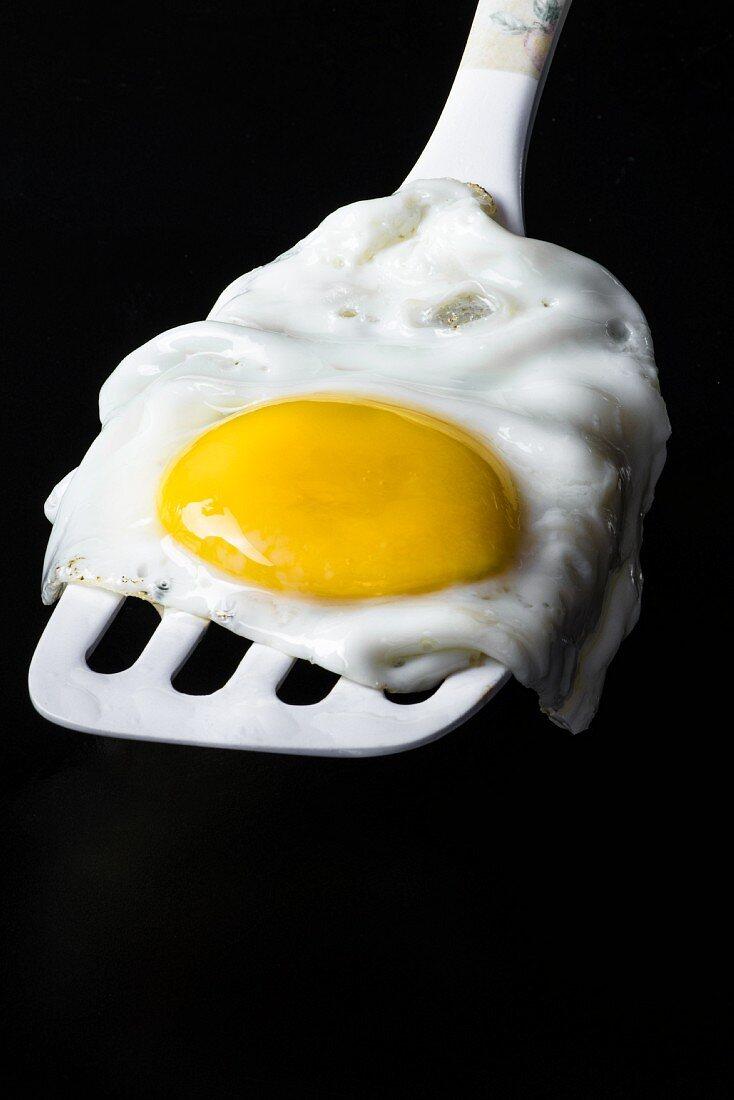 A fried egg on a white spatula on a black background