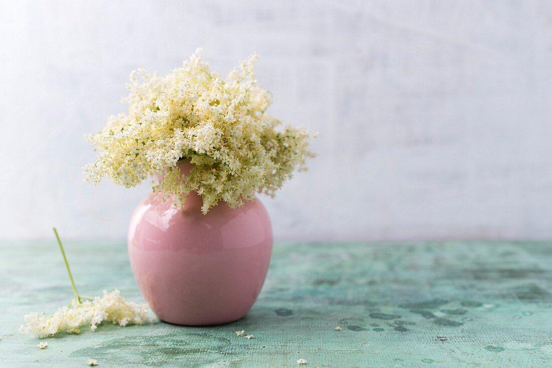 Vase of elderflowers