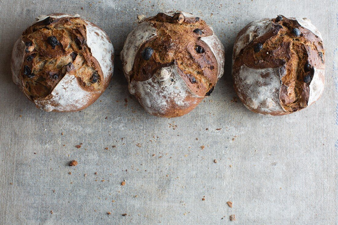 Three loaves of crusty bread made from chestnut flour with raisins and hazelnuts