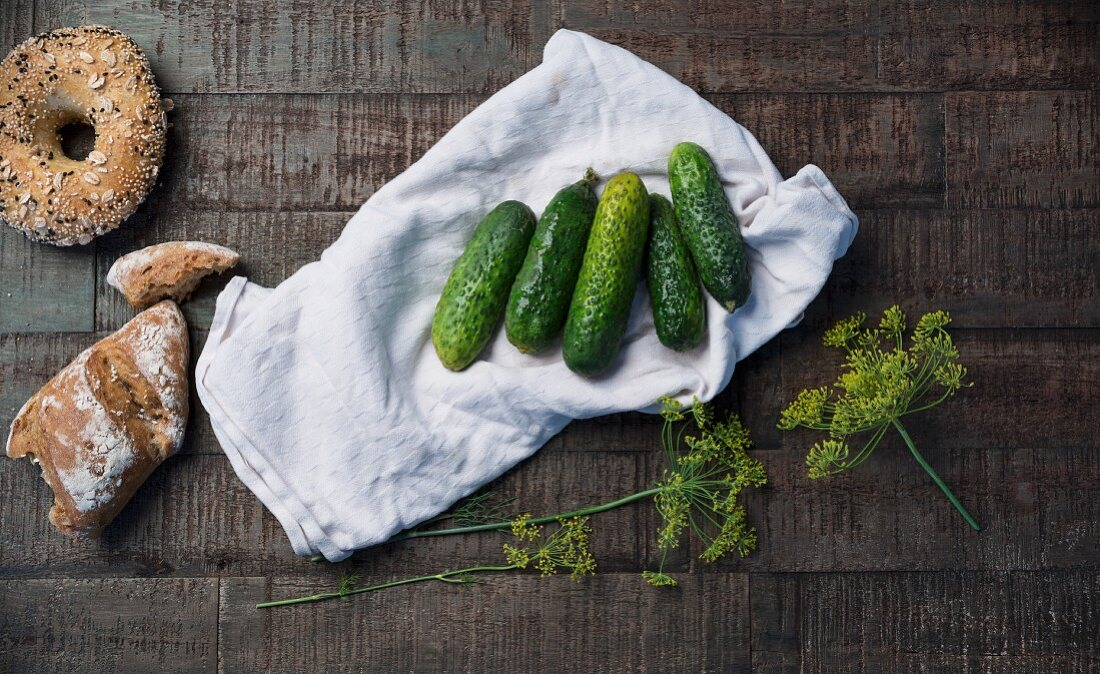 Gherkins with fresh dill on a white tea towel, bread rolls and oat bagels