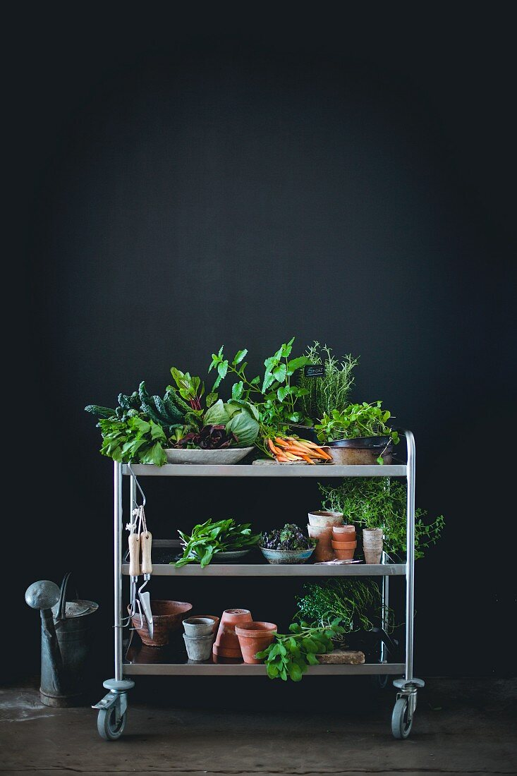 Herbs, vegetables and garden tools and accessories on a trolley