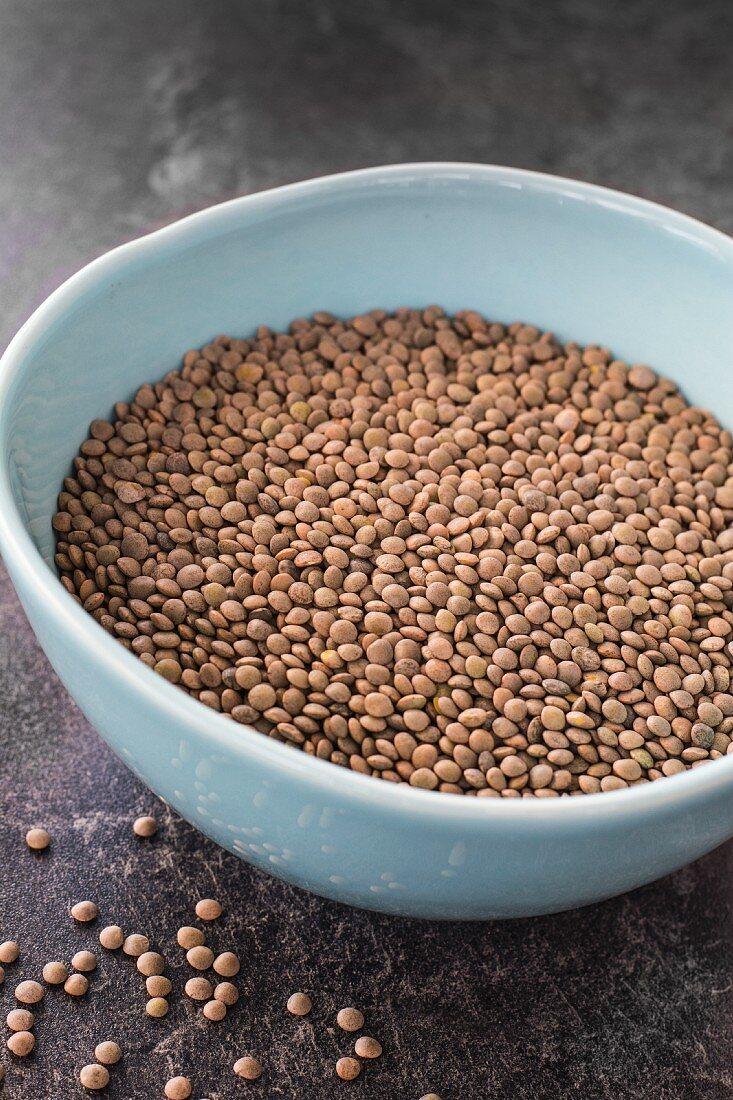 Pardina lentils in a ceramic bowl
