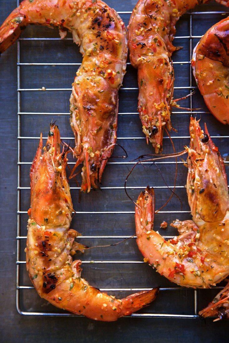Grilled king prawns seasoned with piri piri (seen from above)